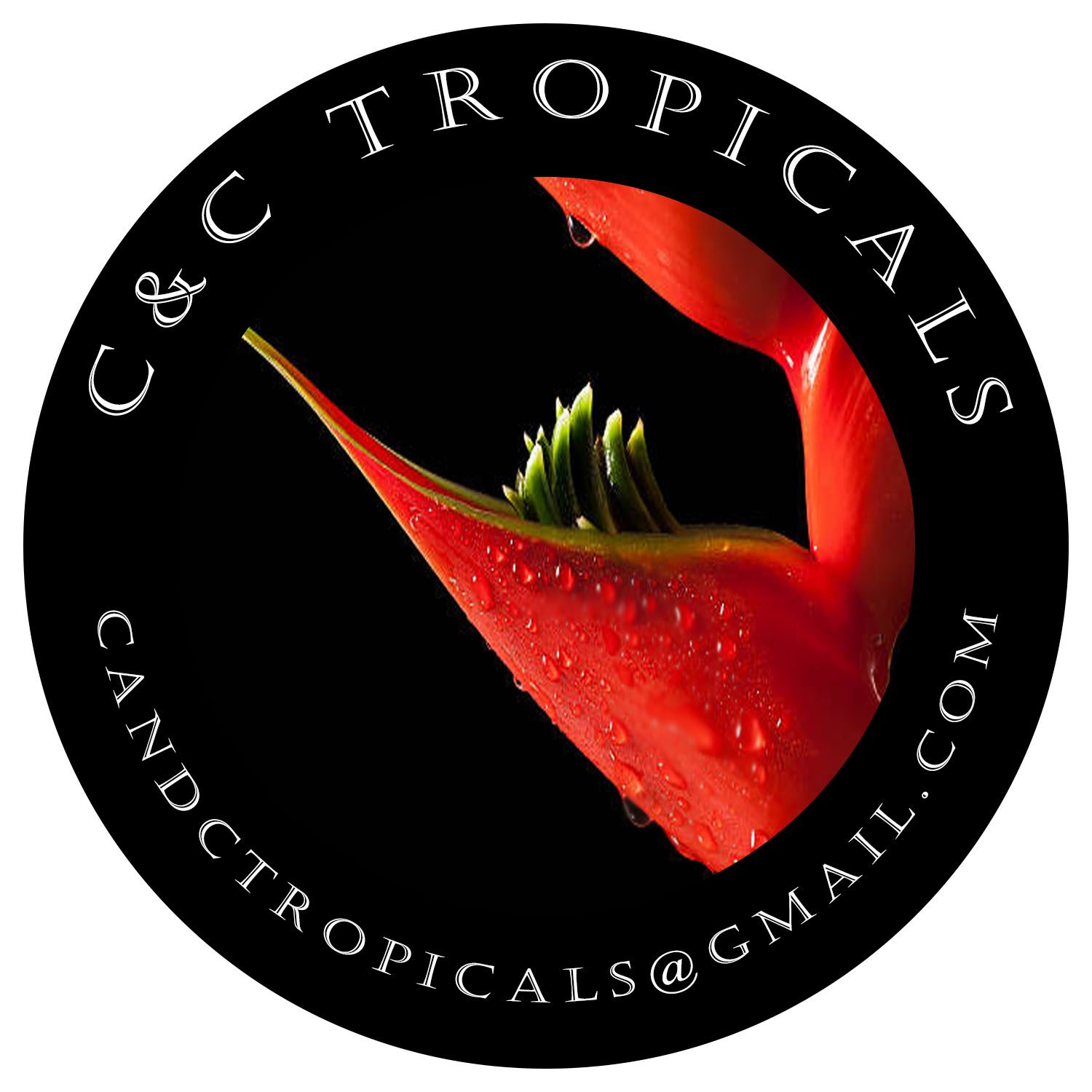 C&C Tropicals